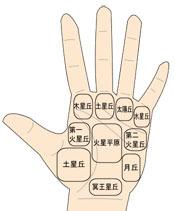 手のひらの丘.jpg